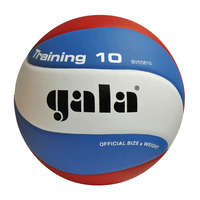 Gala Volleybal Training 10