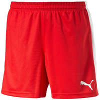 Puma Short Pitch