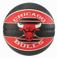 Spalding Basketballen NBA-Team Chicago Bulls maat 5 en 7