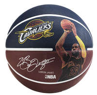 Spalding Basketbal NBA Spelersbal Lebron James