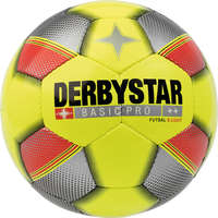 Derybstar Voetbal Basic Pro S-Light Futsal