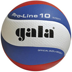 Gala Pro-Line 5581S10 Volleybal